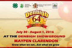 2016-0730-cse-jm-64th-anniversary-denbigh-agricultural-industrial-and-food-show-2016